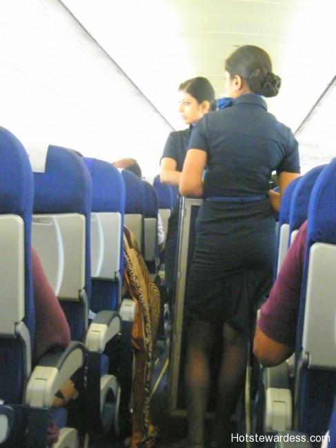 Indigo Flight Attendants Hot Stewardess