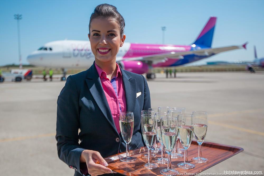 hawaiian airlines flight attendant
